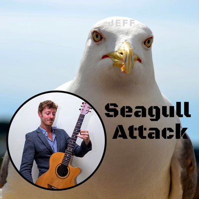 Seagull Attack - Solo Guitar, C Minor