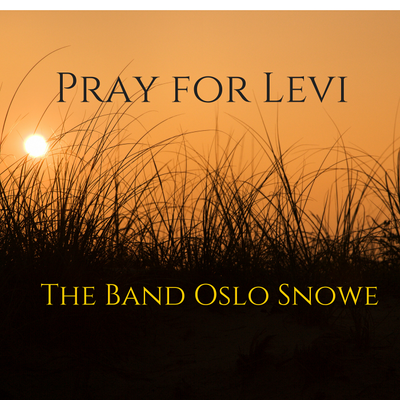 Pray For Levi -- The Band Oslo Snowe