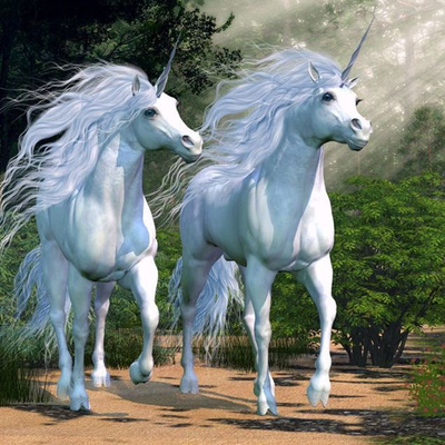 White Unicorns Valley