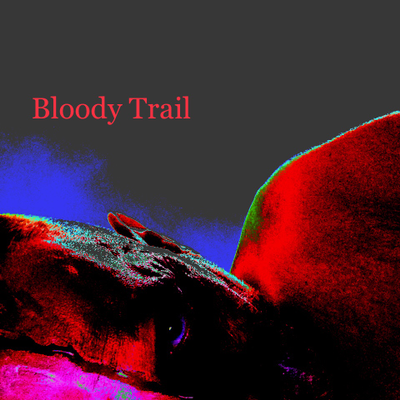 Bloody Trail - 2014  (2017 Rmx)