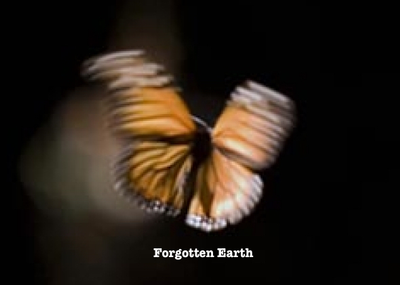 Forgotten Earth