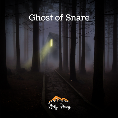 Nicky Havey - Ghost of Snare