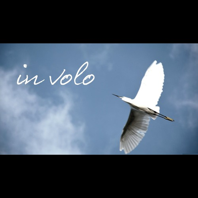 In volo (flying)