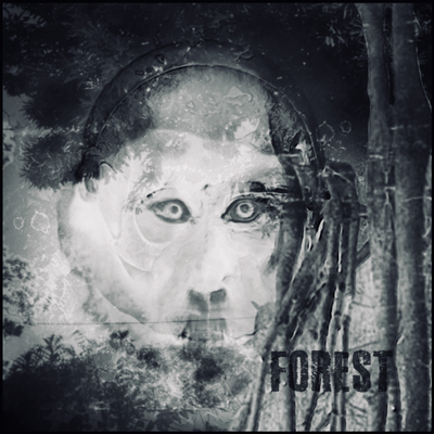 Forest - (2016)