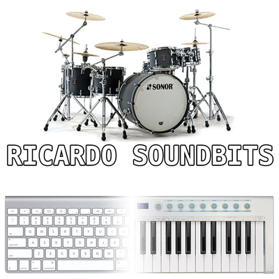 Drum Samples 01 - RICARDO SOUNDBITS