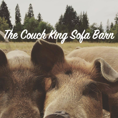 RS Frawstakwa, JayWalkerBlack, Soundwanderer & the Couch King - The Couch King Sofa Barn