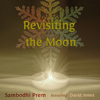 Revisiting the Moon