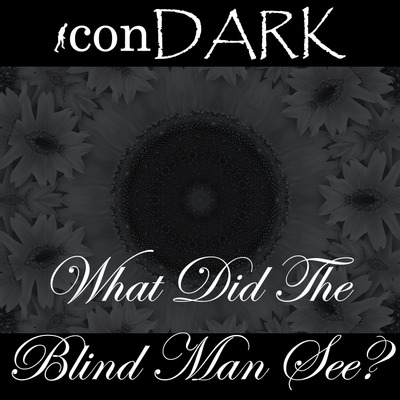 What Did The Blind Man See?