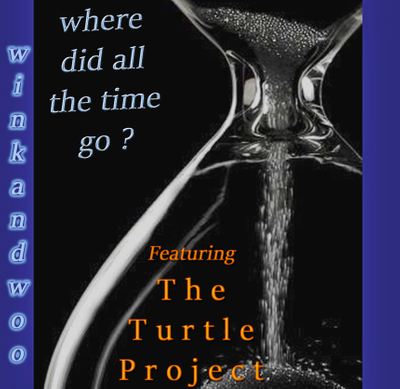 Where Did All The Time Go ? Feat. The Turtle Project